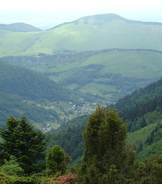 Auberge Miniquette - Bagnères-de-Bigorre - Paysage